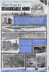 Remarkable Mind - The Courier Mail - Stephen Wiltshire archive - what others say