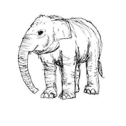 Elephant in London Zoo - Original Drawings
