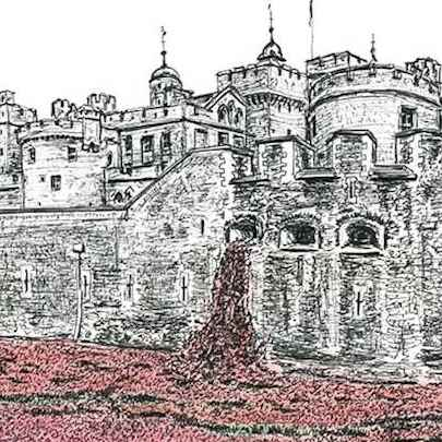 Poppies at the Tower of London - Drawings - Originals, prints and limited editions