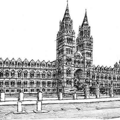 Natural History Museum - Original drawings